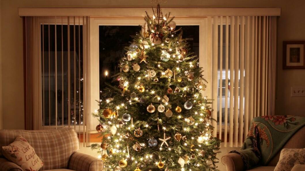 LED-LYS: Juletrelysa er kanskje fine å sjå på, men dei kan også forstyrre Wi Fi-signalet og julefreden.