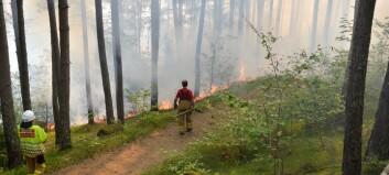 Varslar skogbrannfare i Sogn