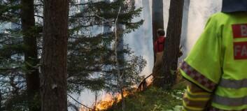 Ekstrem skogbrannfare: No har du ikkje ein gong lov til å grilla på stranda