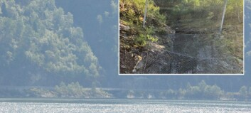 Blokk på 70 kubikk losna ved Finnsåstunnelen - fjorden og nettet fekk det meste