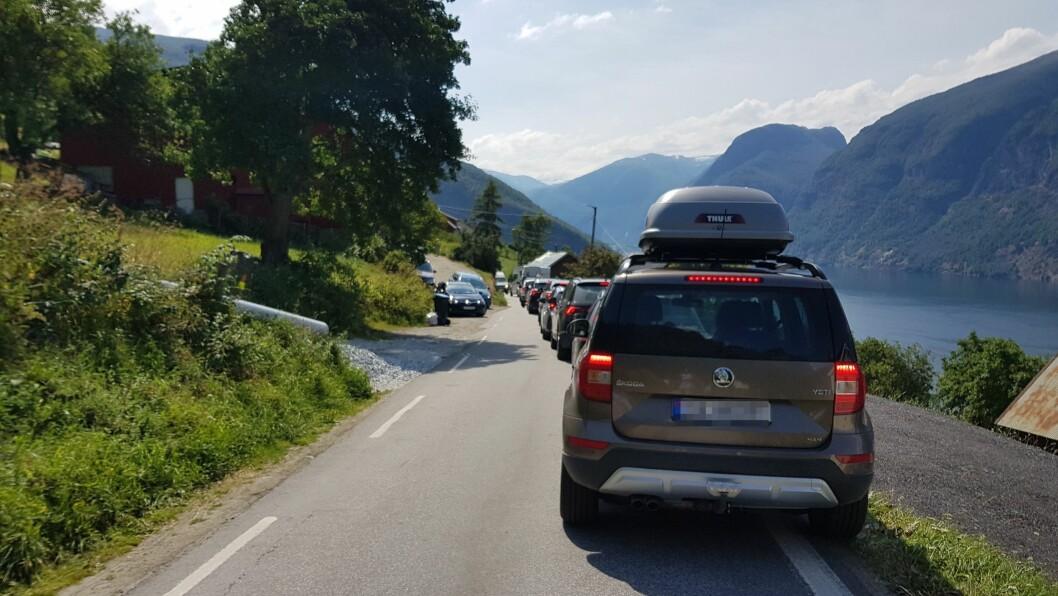 KAOS: Mykje trafikk prøver å koma seg fram til utsiktspunktet Stegastein, torsdag. Det har resultert i trafikkaos i Aurland.