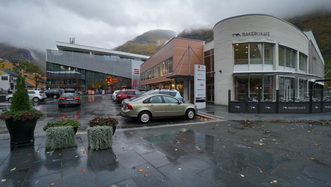 NYTT SELSKAP: Den vesle sjarmøren er eit nystarta selskap i Årdal med adresse i Årdalssenteret.