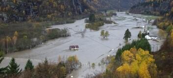 Flaumen i Luster vil kosta kommunen store summar