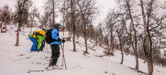 Varslar betydeleg snøskredfare for Indre Sogn