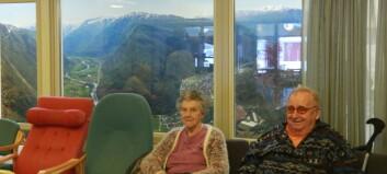 Dei eldre på Lærdal bu- og omsorgsheim er nøgde med ny bildevegg