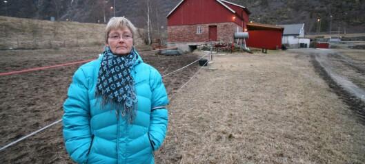 Aud (57) på inntektstoppen i Lærdal etter gardssal