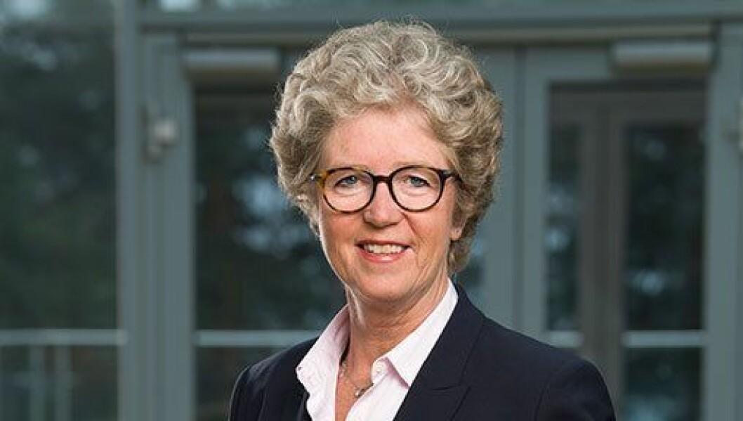 NY KONSERNSJEF: Hilde Merete Aasheim er ny konsernsjef i Norsk Hydro ASA og startar i rolla i mai. Tidlegare konsernsjef Svein Richard Brandtzæg blir i selskapet ut 2019.