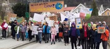 Streika for miljøet i Aurland: – Me er dei framtidige politikarane