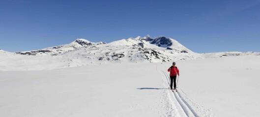 IL Jotun har køyrt og merka 23 km skiløyper til påske