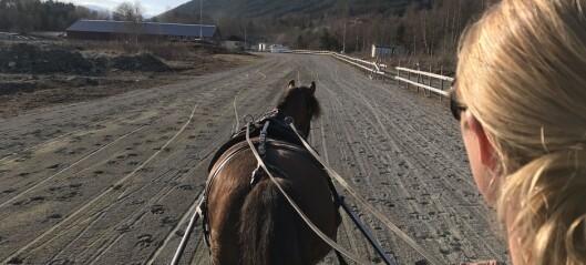 Hestemiljøet i Sogndal vil satsa – håpar på drahjelp frå politikarane