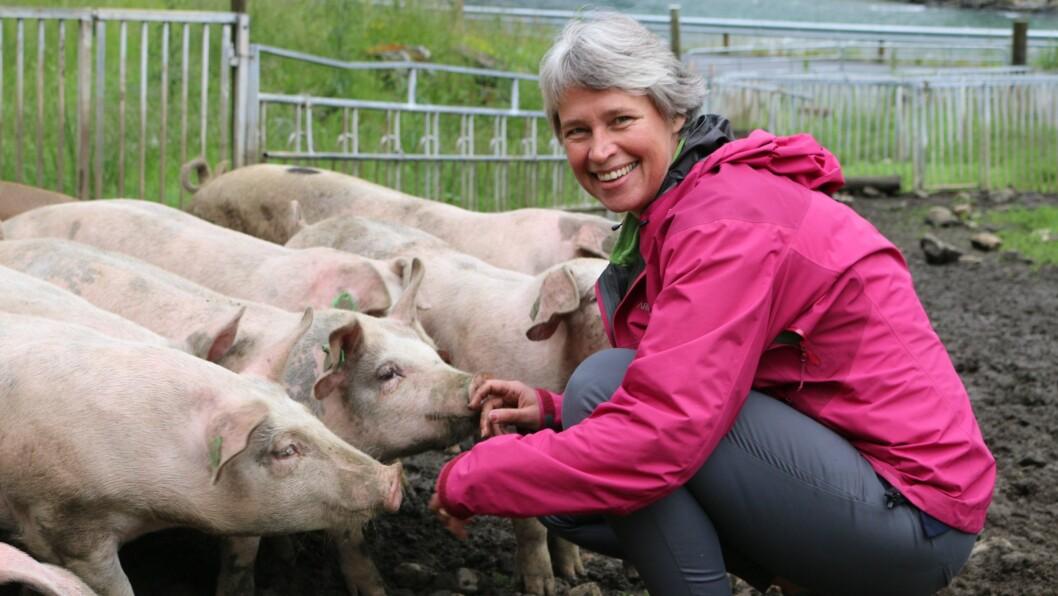 LEV GODT: Grisebonden Kristine Ohnstad er ofte borte til grisane for å sjekke at dei har det bra.