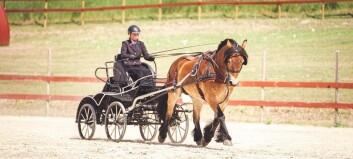 Marta Valland Hofslundsengen (18) og hesten Tåbba er nordisk meister
