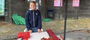No sel Valters (11) bær heilt åleine