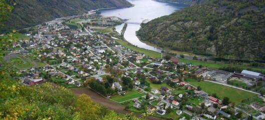 Okken kraft holding skal forvalta energiselskap i Lærdal og kafé vart sletta