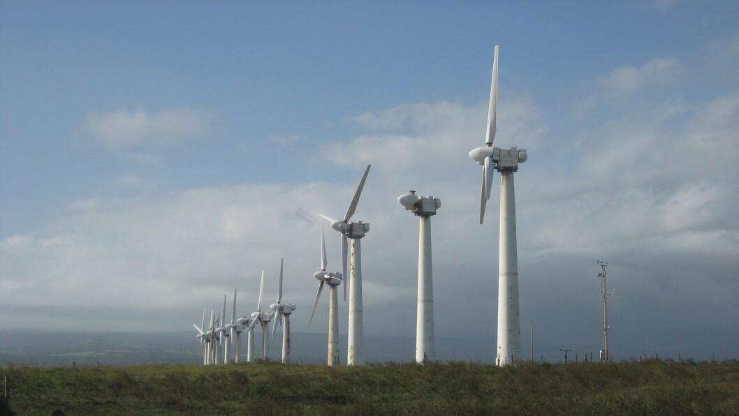 KRAV: Informasjonskomitéen mot vindkraft i Fjaler, Gaular, Hyllestad og Høyanger ber Fred. Olsen Renewables om at dei trekkjer si melding til NVE om Høyangerfjell vindkraftverk.