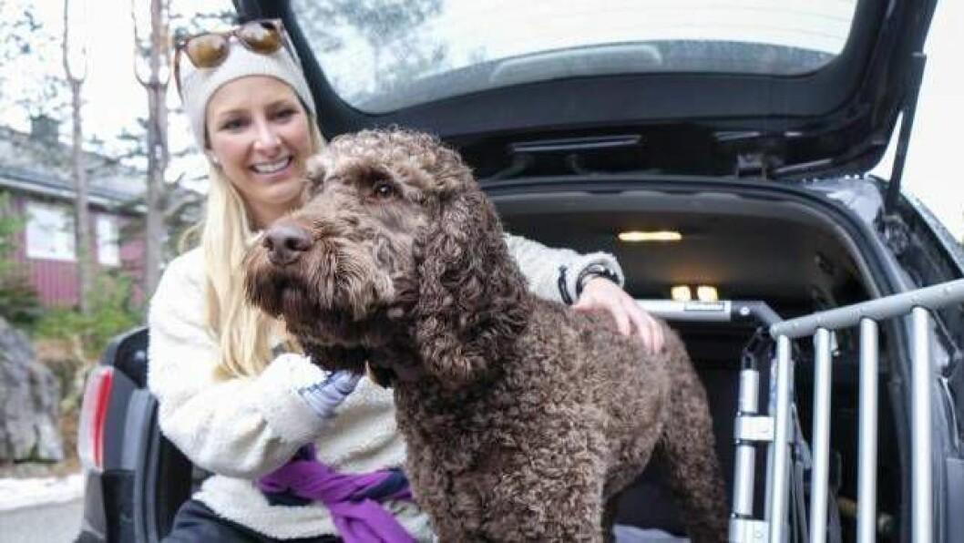 DØDSFALL: Mattilsynet har fått meldingar om dødsfall blant hunder frå heile landet.