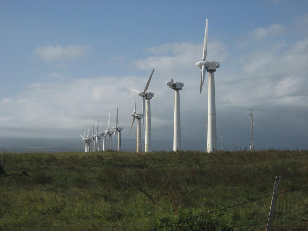 MOTSTAND: Mange har engasjert seg i kampen mot vindkraftutbygging i kommunane som ligg inne i forslaget til nasjonal ramme for vindkraft.