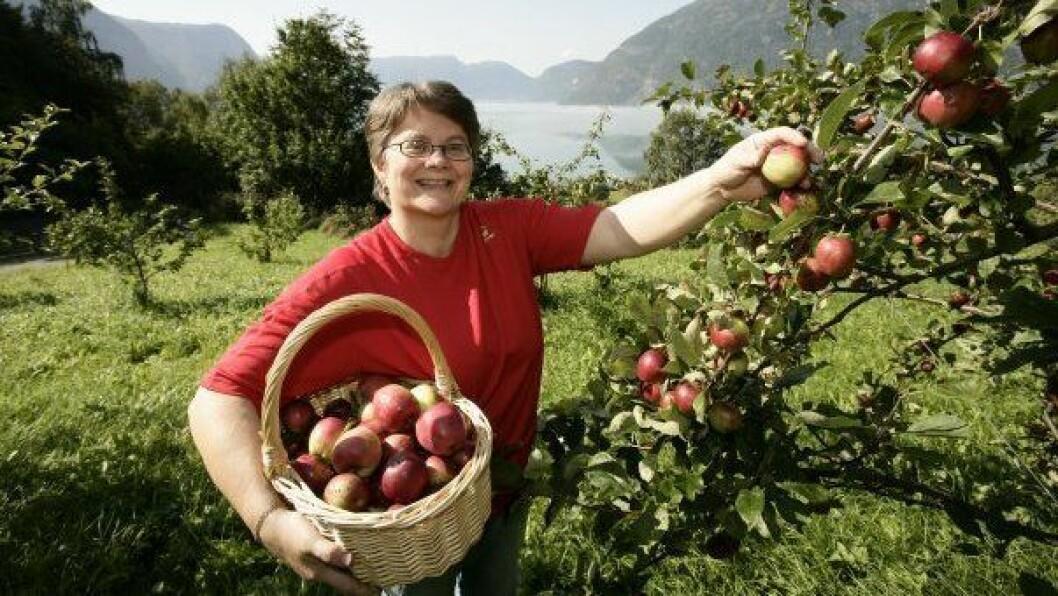 GIR SEG: Anne Lise Haukadal har drive frukt og saft-produksjon på sørsida av Lustrafjorden i mange år.