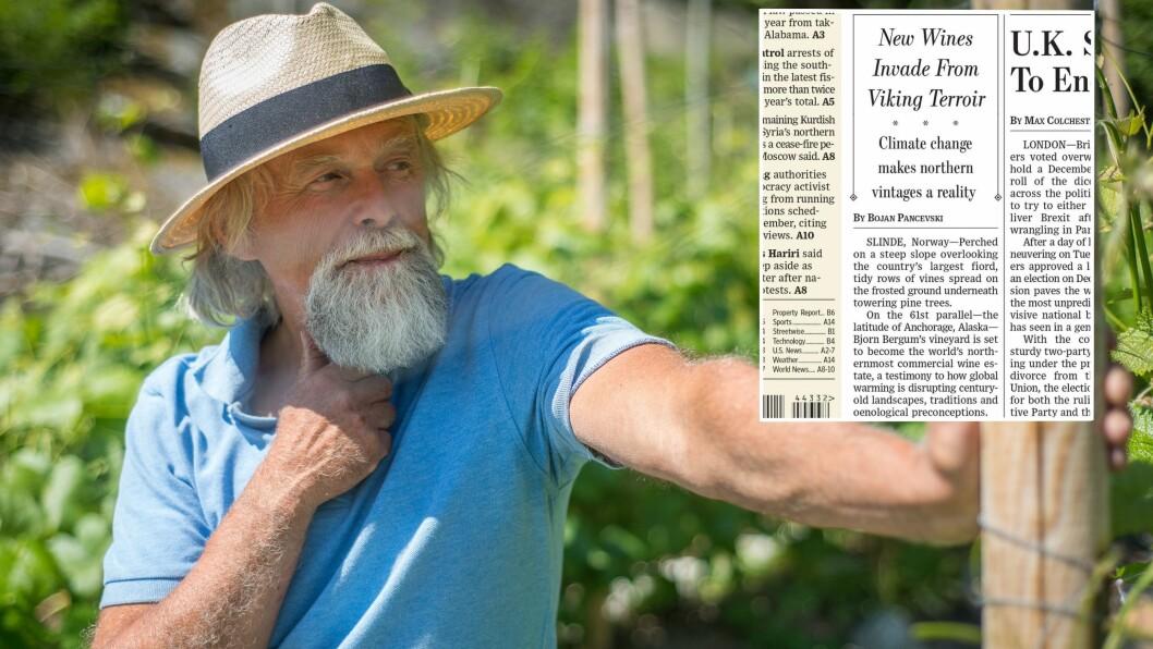 GLOBALT FENOMEN: Vinen til Bjørn Bergum på Slinde i Sogndal vekkjer merksemd verda over, no sist med framsideoppslag i Wall Street Journal.