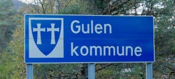 I Gulen har nesten alle sjukepleiarane teke etterutdanning