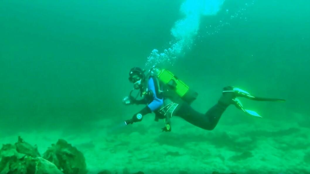 Sogndal dykkarklubb reiser av og til på utflukt til andre plassar i fylket.