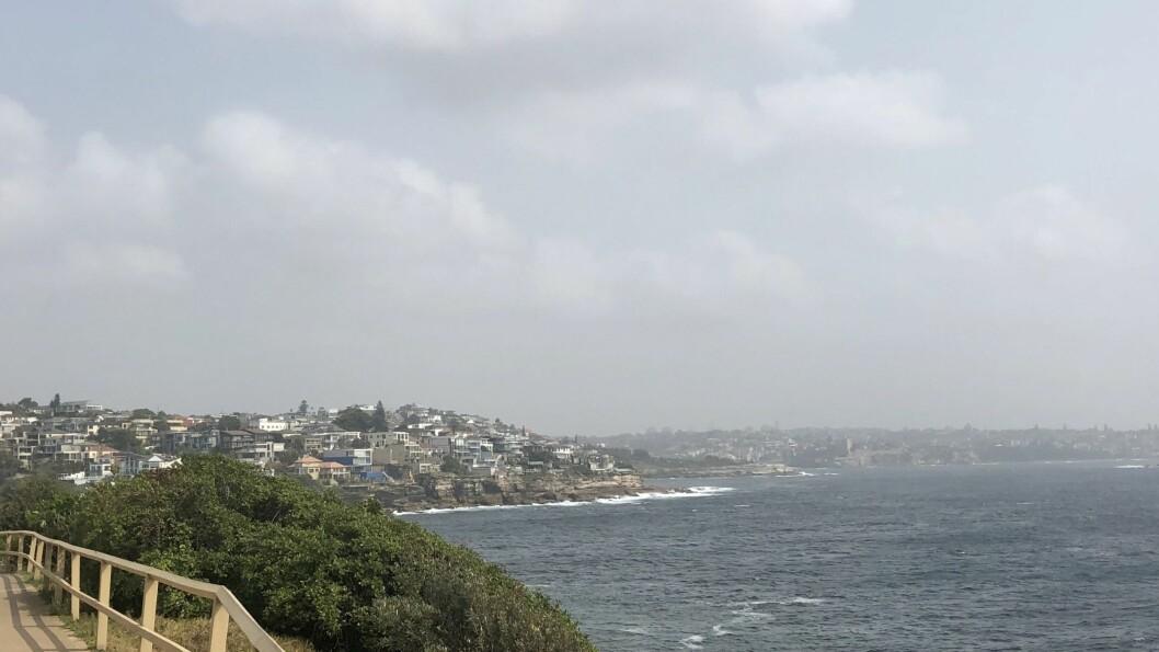 TJUKK RØYK: Mange skogbrannar herjar i Australia. Sydney har sleppt unna det verste hittil, men røyk frå brannar i nærområdet ligg over byen.