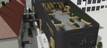 Nye og endelege teikningar avslører spreke terrasseplanar