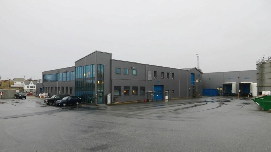 PLANAR: Firda Seafood Group på Byrknesøy har planar om eit settefiskanlegg, men er uroa over vilkåra for næringa framover.