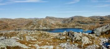 Går vidare med vindkraftplanar – skal ha grenseoppgang i Høyanger-fjella