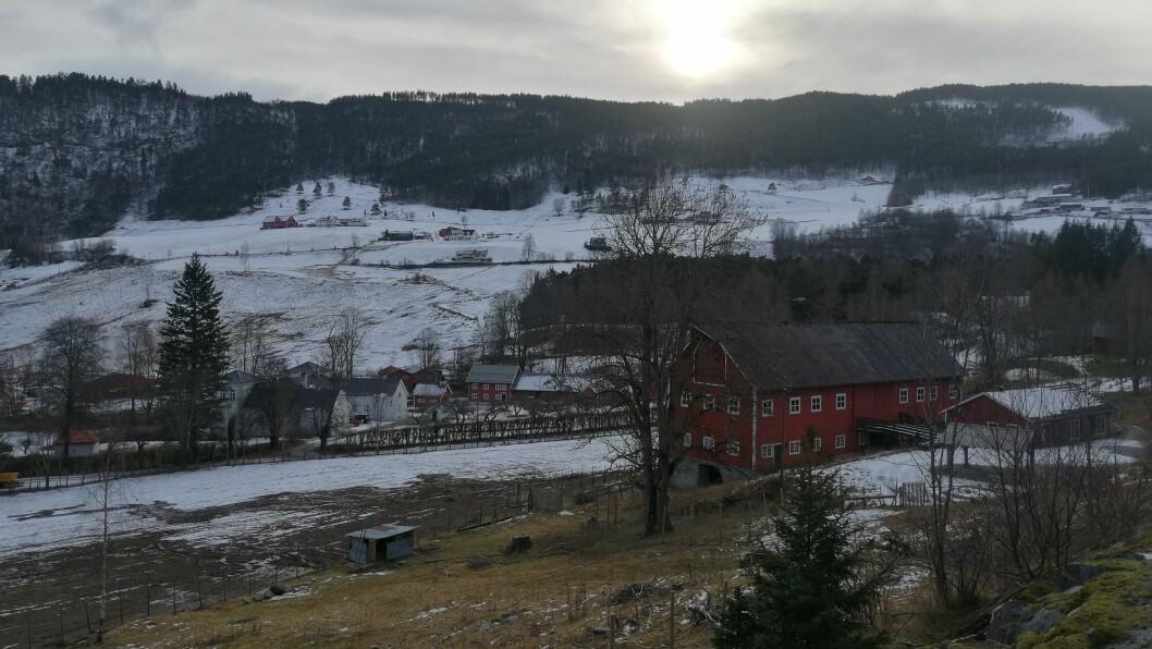 ULOVLEG MATERIALE: Låven på Kaupanger Hovedgård er i dårleg stand og må restaurerast. Taket som no er av eternitt eller asbest vil dei byte ut med solcellepanel.