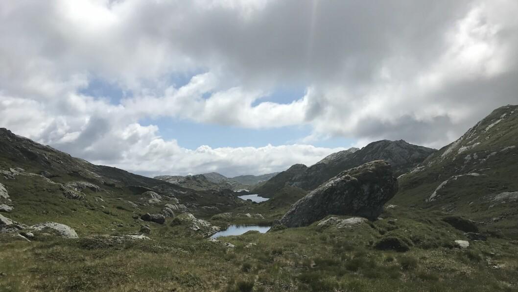 SAMLA POENG: Langedalen på Indre Oppedal på veg mot Svafjell, som er den av fjelltrimpostane til Brekke IL som gjev mest poeng. Svafjell kan skimtast i det fjerne til høgre i biletet.