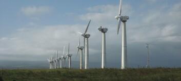 Småskala vindkraftindustri - er det mogleg?
