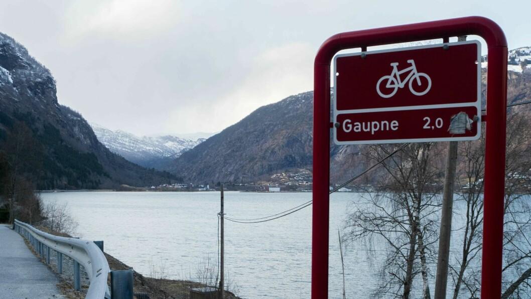 TURVEG: Den nye turvegen startar like etter avkøyrsla til Marifjøra.