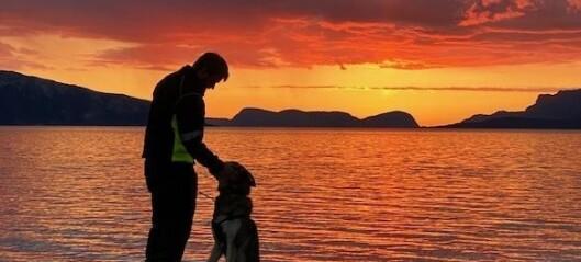 Vakker solnedgang over fjorden i Brekke