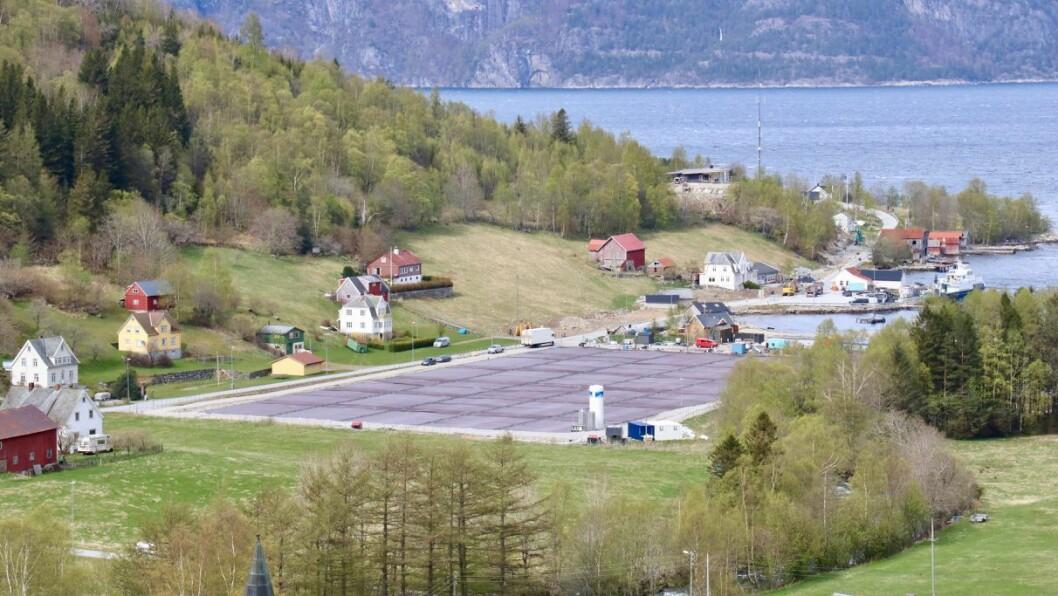 ENDRING: Sogn Aqua AS har gjort endringar i styret. Fotoet syner anlegget til verksemda i Ortnevik.