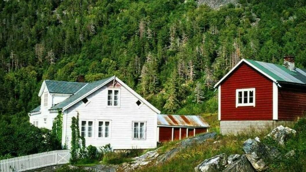 FLAUM OG STEIN: Namnet på Eldegarden kan koma av at elvi i flaumtider tok med seg store mengder stein.