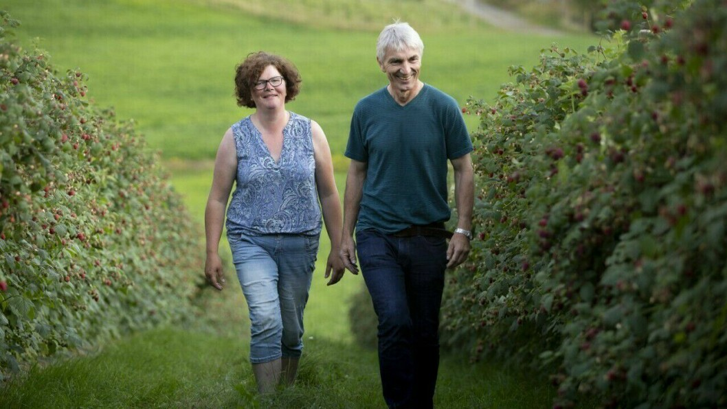 TVEITA GARD:  Kathrine Styve Høydal og mannen Yngve Høydal jobbar no med å utvikle ulike sortar bær.