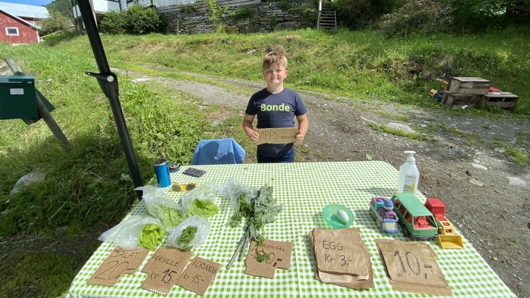 KREMMAR-KRISTEN: Kristen Lerum (8) sel både salat og leiker frå boden sin på Leri, Sørheim.