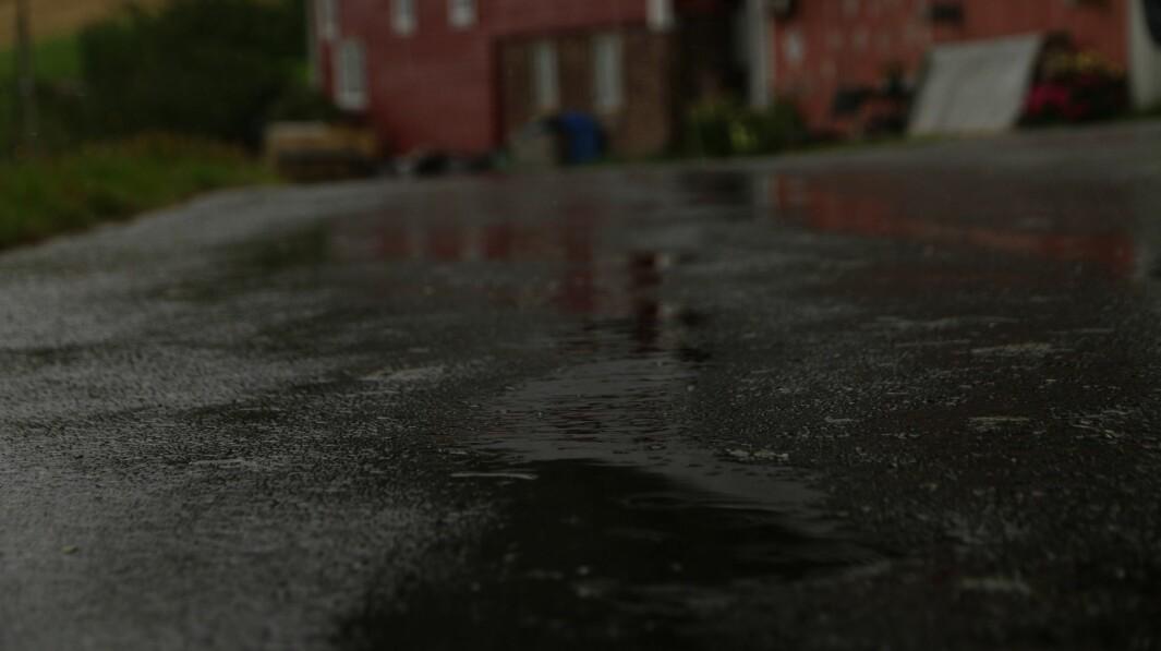 VÅTT: Fleire plassar i Sogn har asfalten blitt våt søndag. Likevel er det ikkje nok til at farevarslinga om lyngbrann forsvinn.