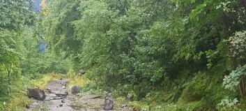 Mann var på tur i nærleiken av raset i Høyanger: – Så nær at han kunne fått steinar i hovudet