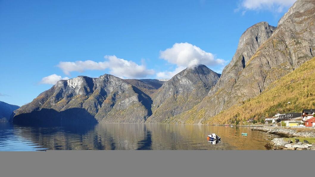 Skjerdalsberga