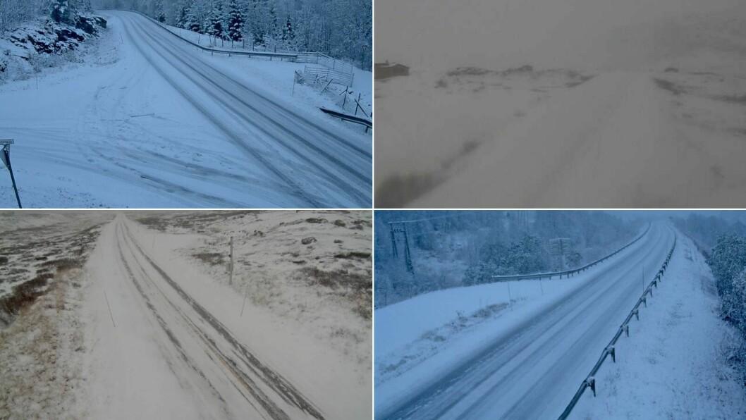 SNØFORHOLD: Både i låglandet og på fjellovergangane er vakna ein til snø tysdag morgon. Her frå Indre Hafslo, Årdal-Tyin, Hemsedalsfjellet og Frudalen.