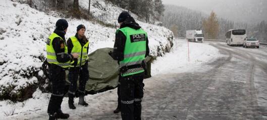 Politiet: – Tyder på at personbilen har kome over i motgåande felt