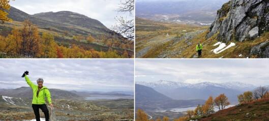 Helgaturen: Her kan ein få panoramautsikt over heile Filefjell