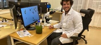 Javier (29) flytta over heile kontinentet for å arbeide med algar i Årdal: – Eg tilpassar meg