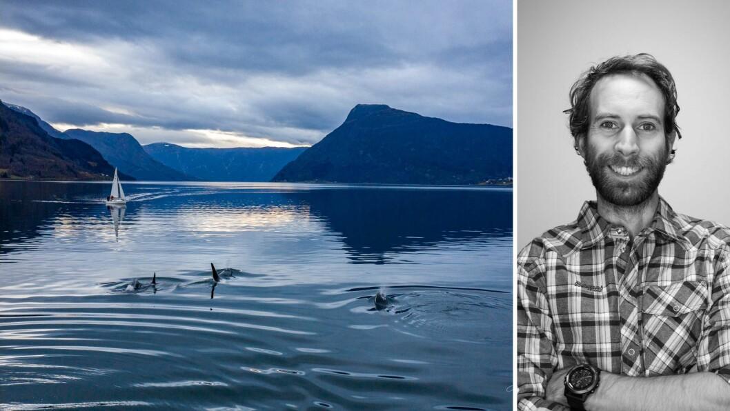 SPEKKHOGGAR: Tore Friele Lie fanga spekkhoggarane i Lustrafjorden både på film og med bilder.
