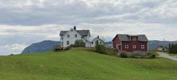 Ungt par kjøpte småbruk på Hafslo for over fem millionar kroner: – Det var veldig populært