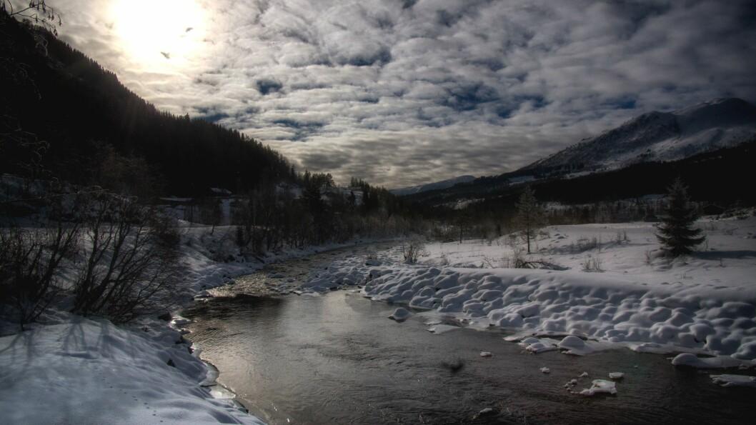 Sogndalsdalen i 2017. Det er ikkje kjent om det var i denne delen av dalen det vart køyrt.