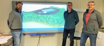 No blir det ny miljøpark i Gaupne: – Har vore for liten lenge