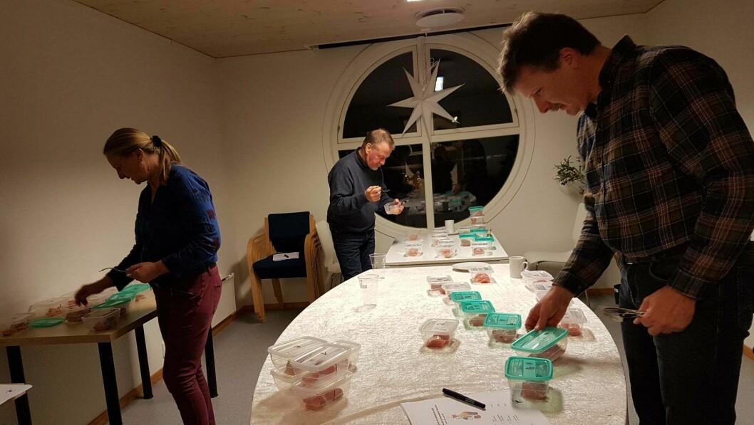 GOD AVSTAND: Dommarane måtte halde god avstand då dei forskjellige rakfisk-innslaga skulle bedømmast. Frå venstre: Brita Einemo Zwart, Henry Gram og Kjell Olav Cock.